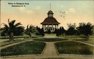 Scene in Hampton Park Charleston, SC